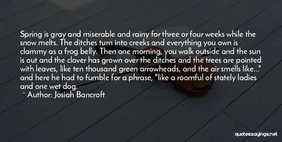 Rainy Morning Quotes By Josiah Bancroft
