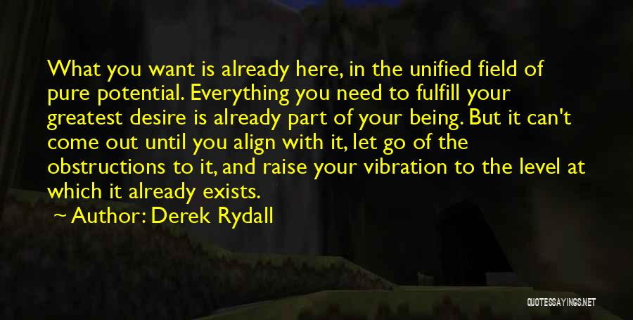 Raise Your Vibration Quotes By Derek Rydall