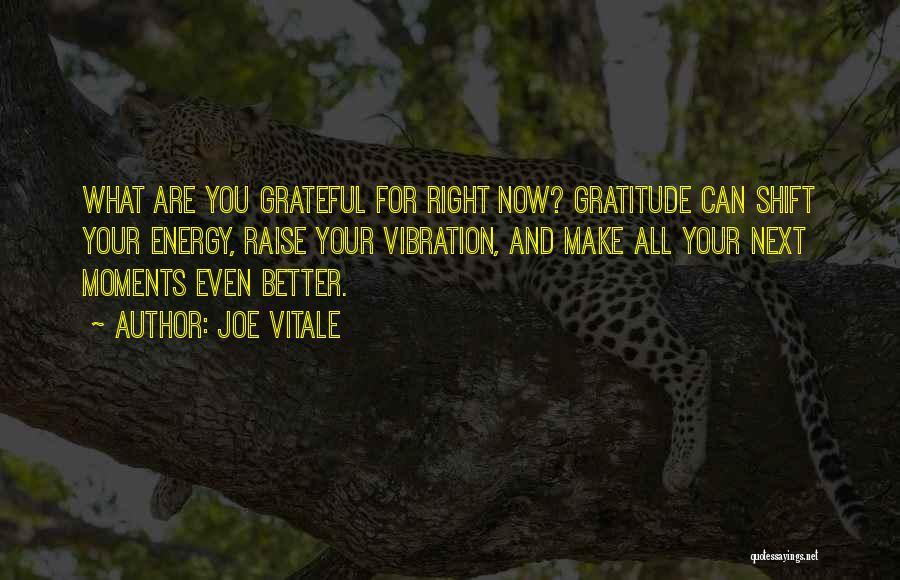 Raise Your Vibration Quotes By Joe Vitale