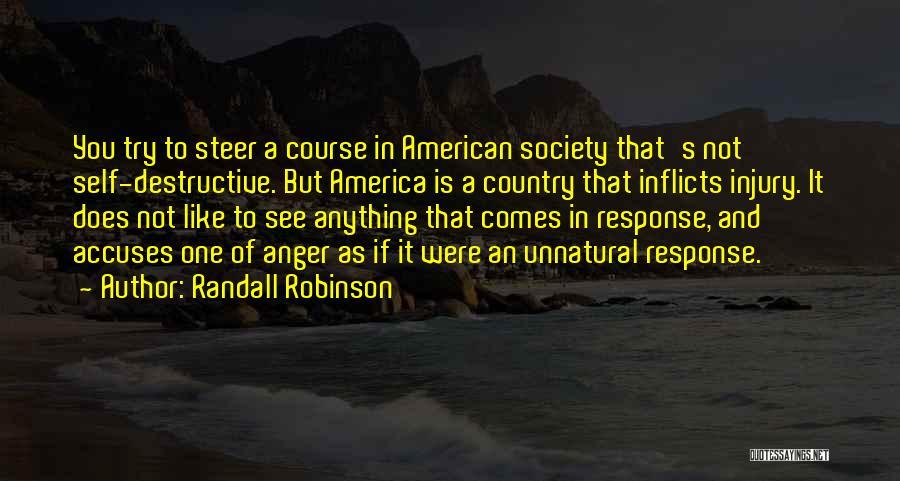 Randall Robinson Quotes 661265