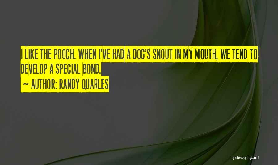 Randy Quarles Quotes 1624265