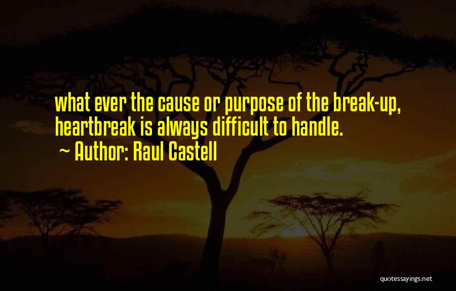 Raul Castell Quotes 612688