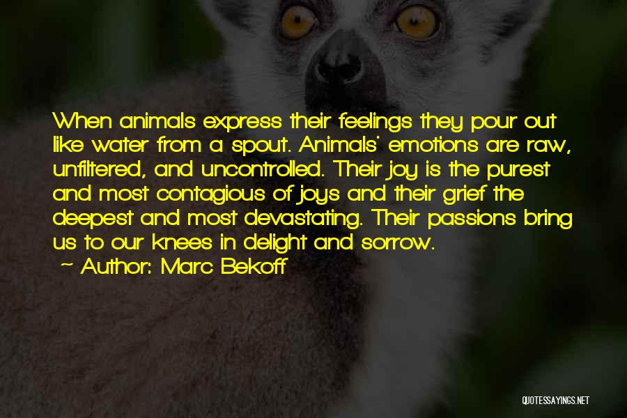 Raw Emotion Quotes By Marc Bekoff
