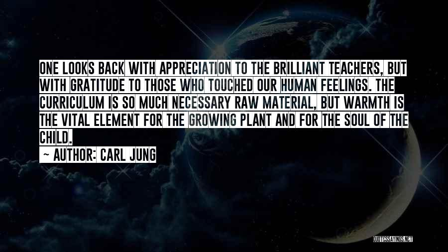 Raw Quotes By Carl Jung
