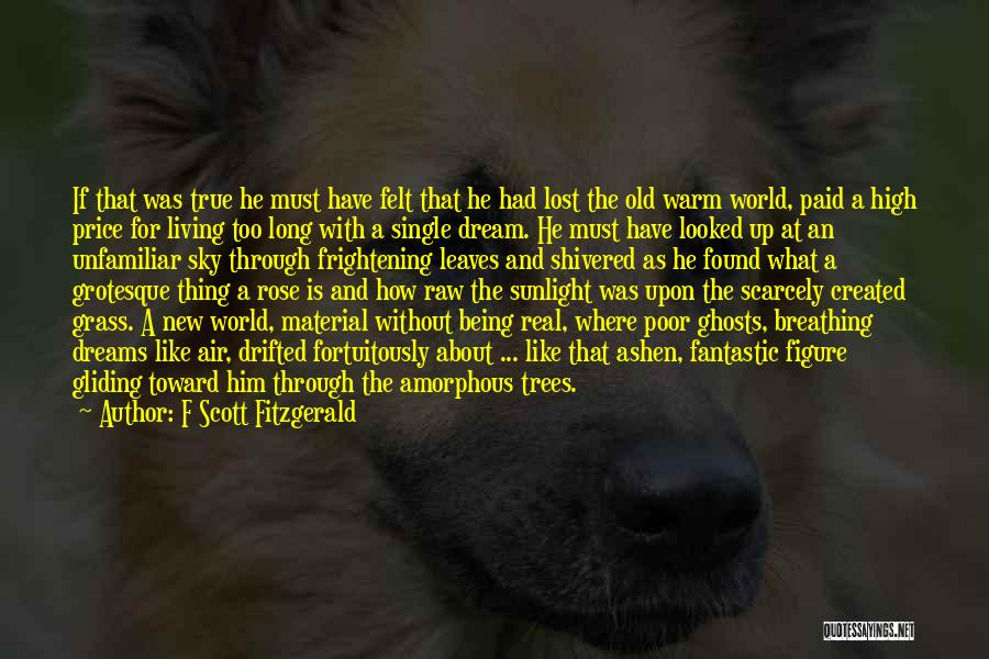 Raw Quotes By F Scott Fitzgerald