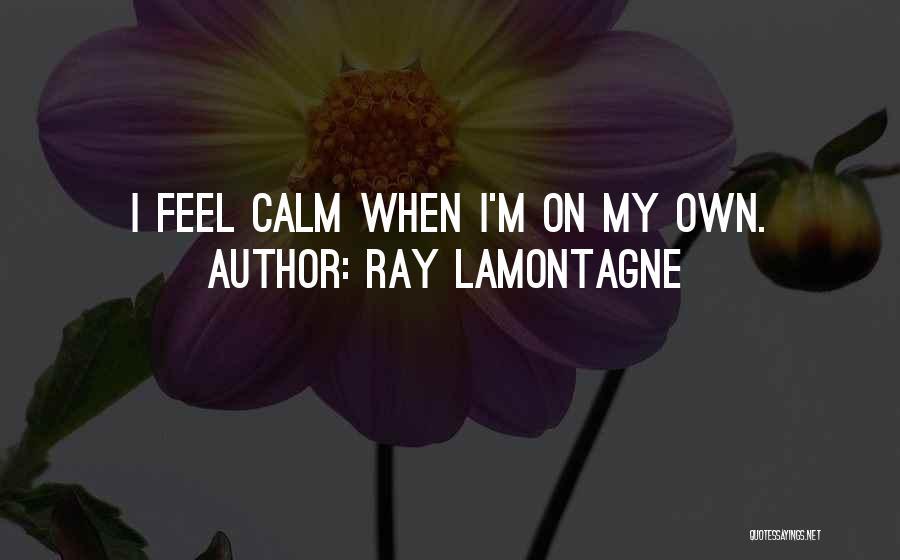 Ray Lamontagne Quotes 1409314