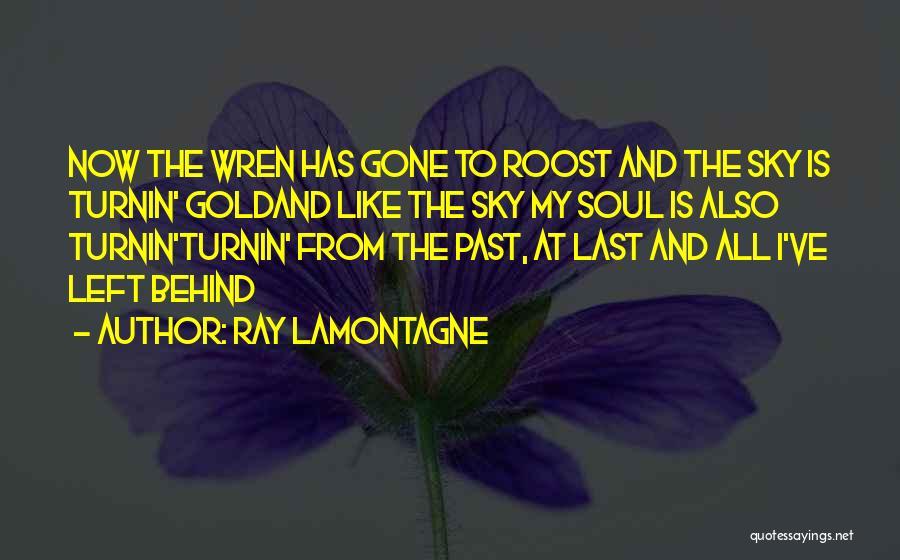 Ray Lamontagne Quotes 2245457