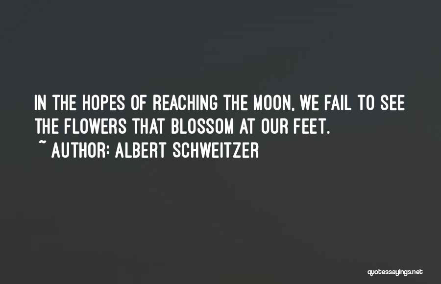 Reaching The Moon Quotes By Albert Schweitzer