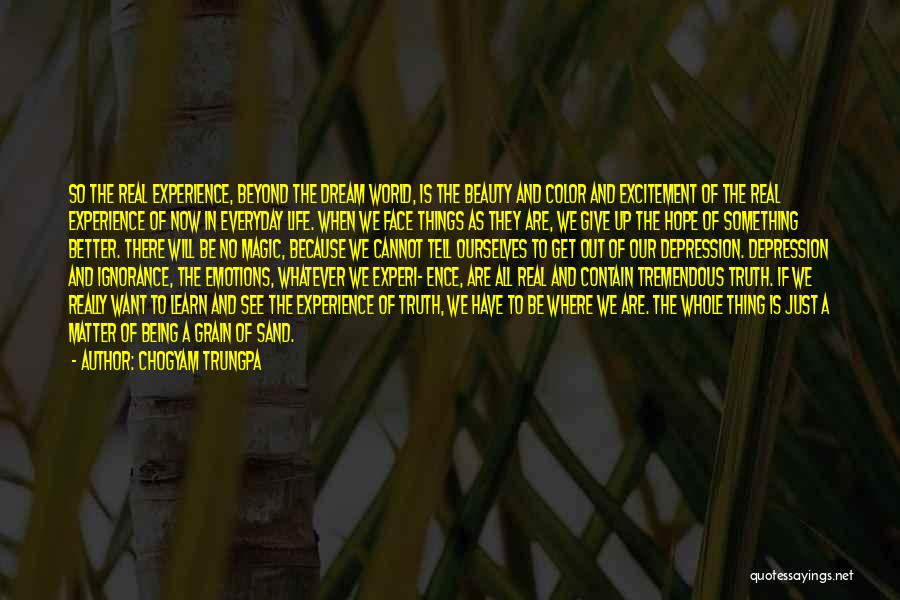 Real Beauty Quotes By Chogyam Trungpa
