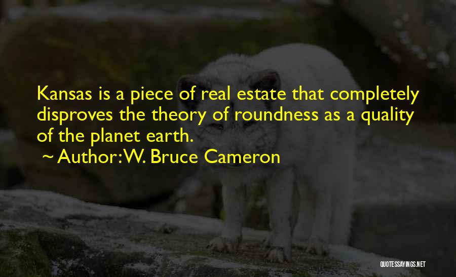 Real Estate Quotes By W. Bruce Cameron