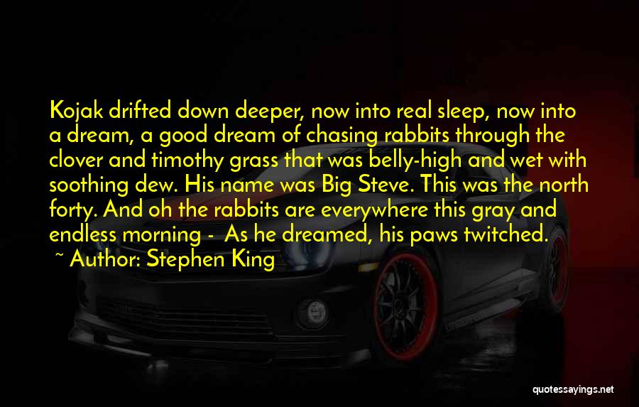 Real Good Morning Quotes By Stephen King