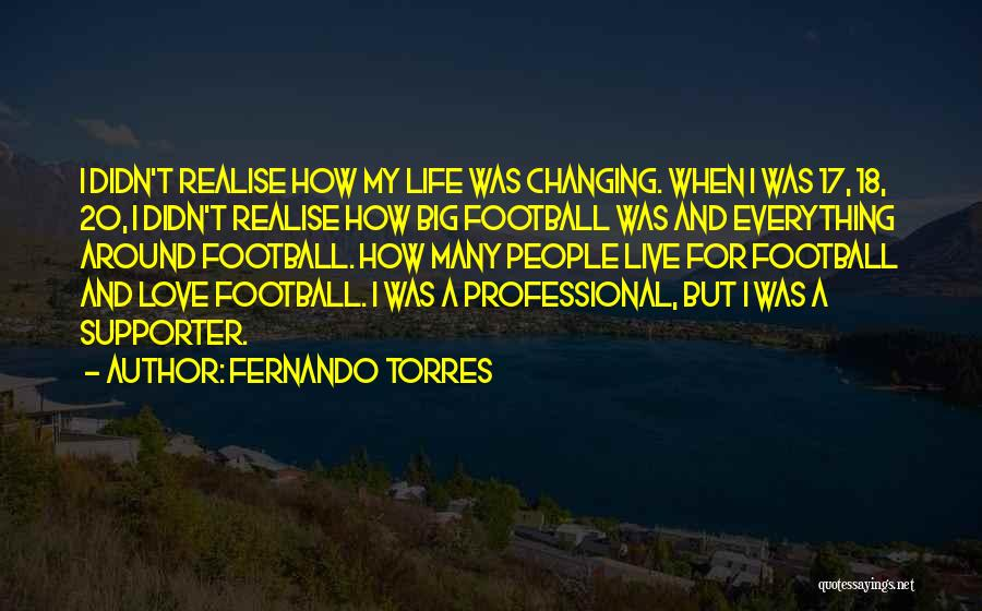 Realise My Love Quotes By Fernando Torres