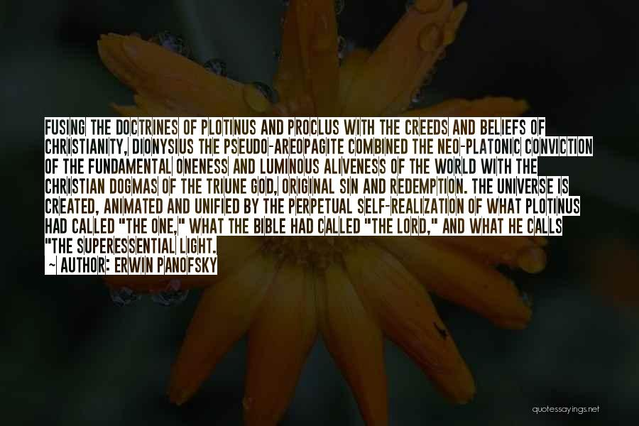 Realization Of Self Quotes By Erwin Panofsky