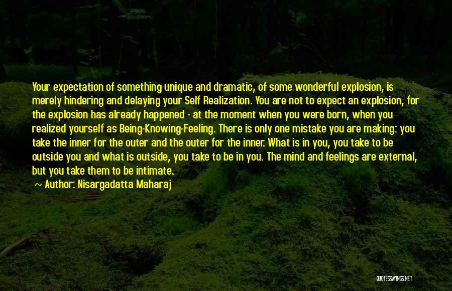 Realization Of Self Quotes By Nisargadatta Maharaj