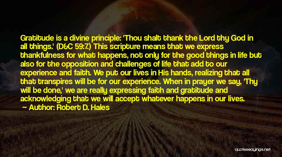 Really Good Faith Quotes By Robert D. Hales