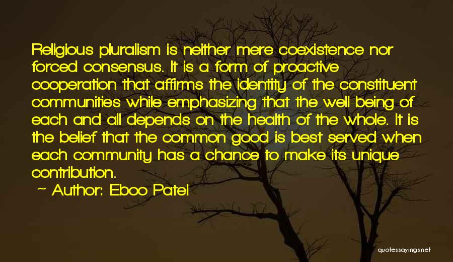 Really Good Unique Quotes By Eboo Patel