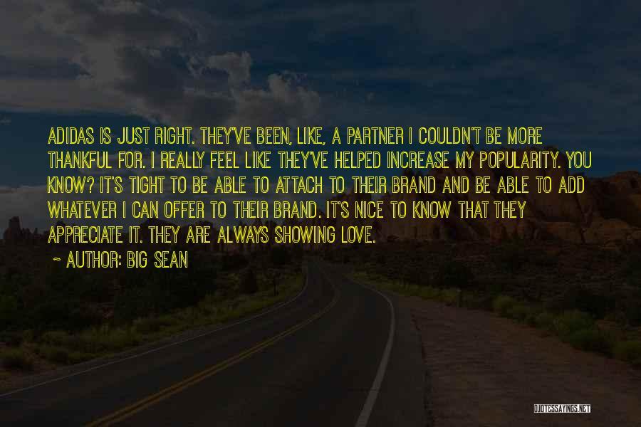 Really Nice Quotes By Big Sean