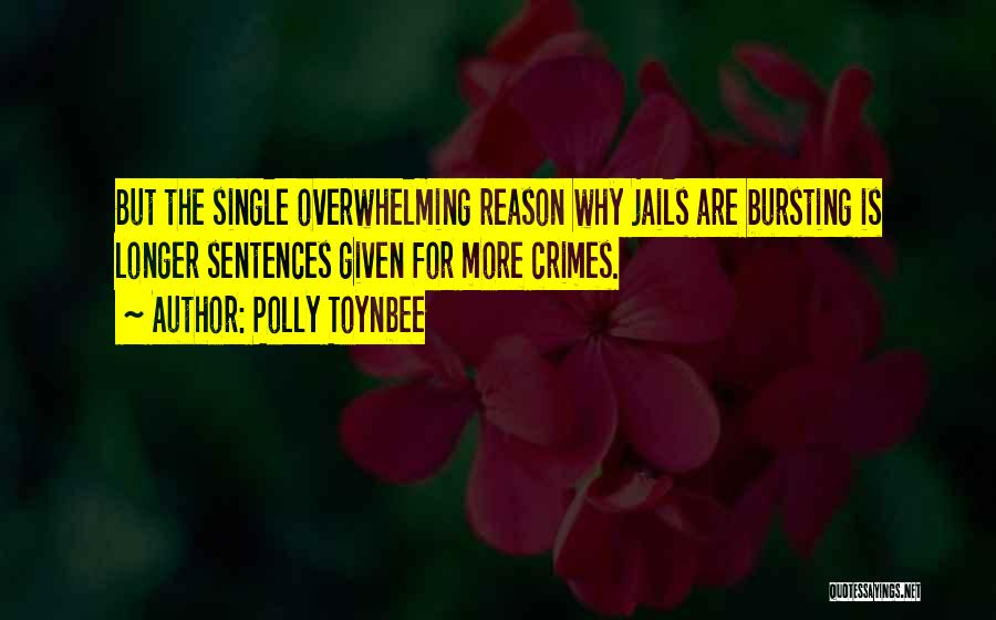 Reason Why I'm Single Quotes By Polly Toynbee
