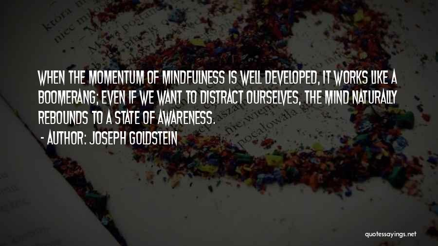 Rebounds Quotes By Joseph Goldstein