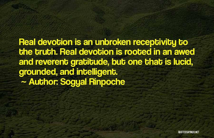Receptivity Quotes By Sogyal Rinpoche