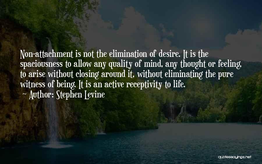 Receptivity Quotes By Stephen Levine