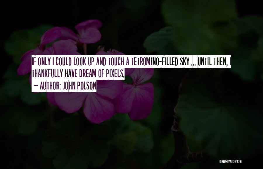 Reclaiming The Sky Quotes By John Polson