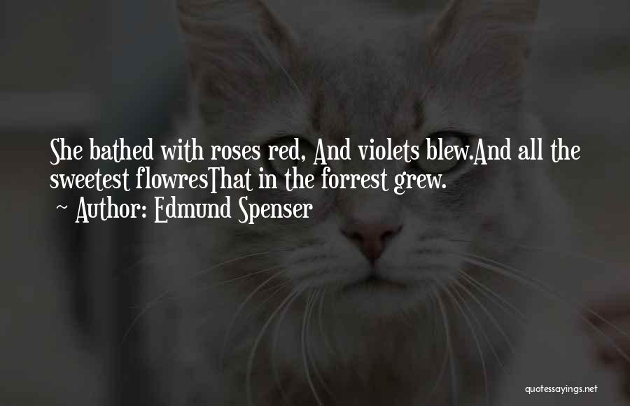 Red Rose With Quotes By Edmund Spenser