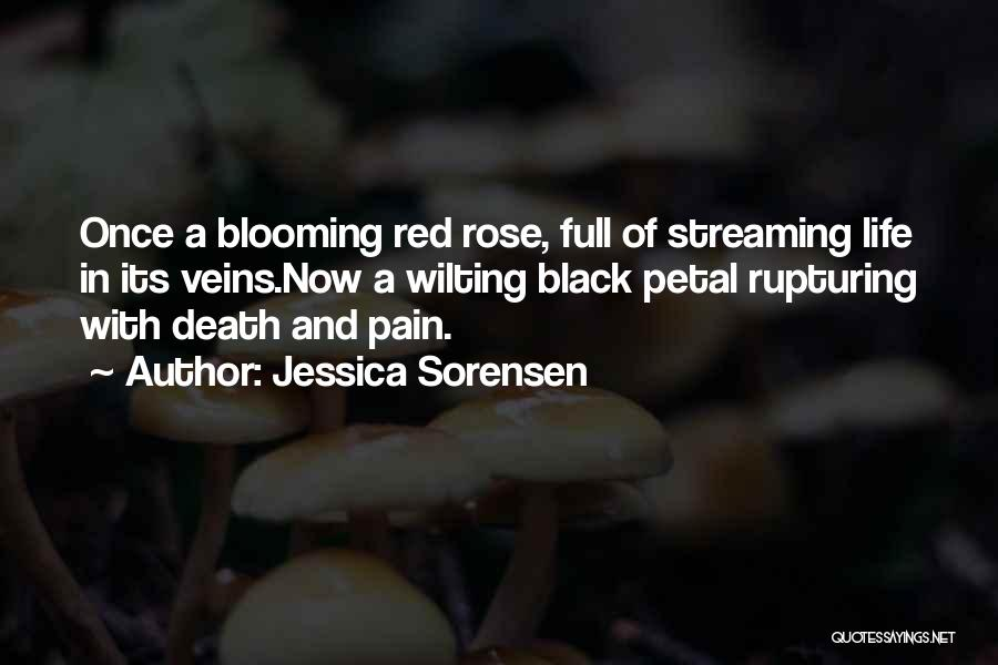 Red Rose With Quotes By Jessica Sorensen