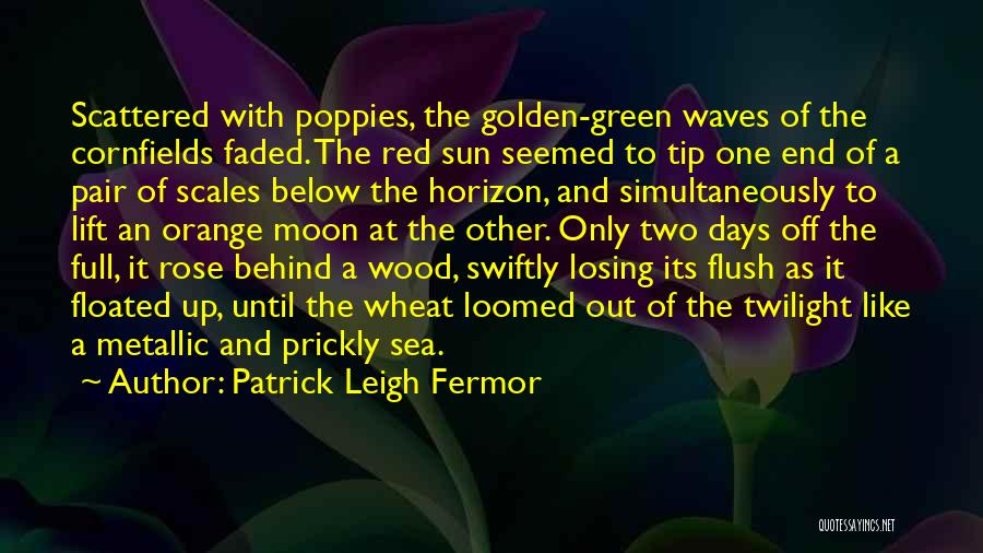 Red Rose With Quotes By Patrick Leigh Fermor