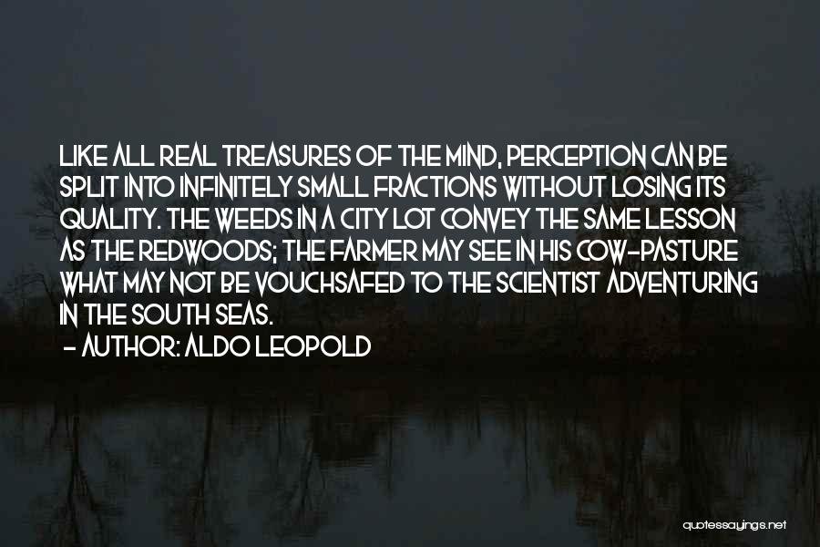 Redwoods Quotes By Aldo Leopold
