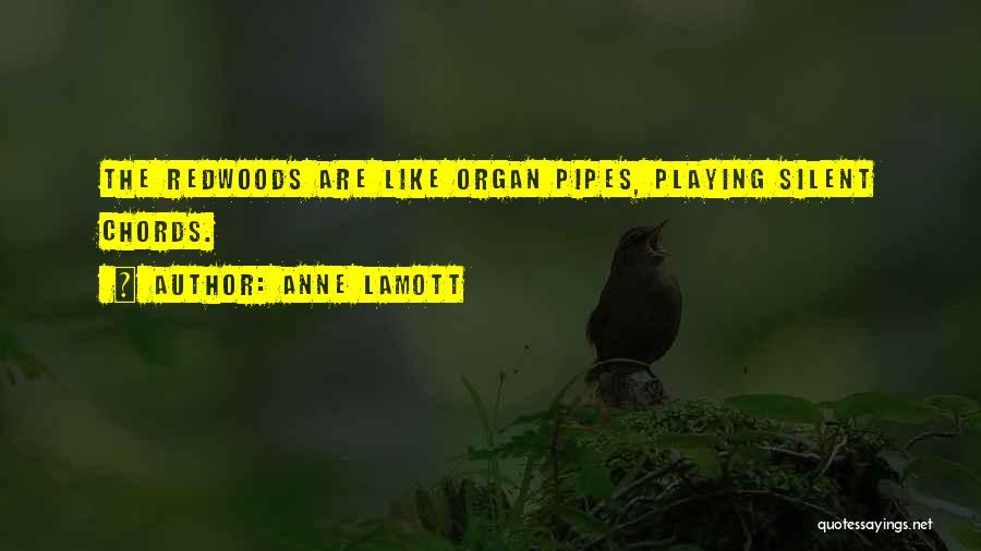 Redwoods Quotes By Anne Lamott