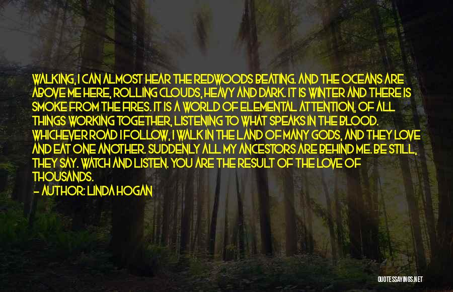 Redwoods Quotes By Linda Hogan