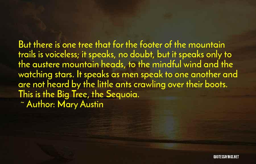 Redwoods Quotes By Mary Austin