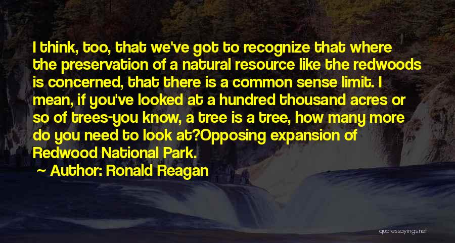 Redwoods Quotes By Ronald Reagan