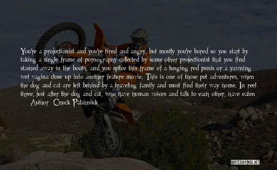 Reel Quotes By Chuck Palahniuk