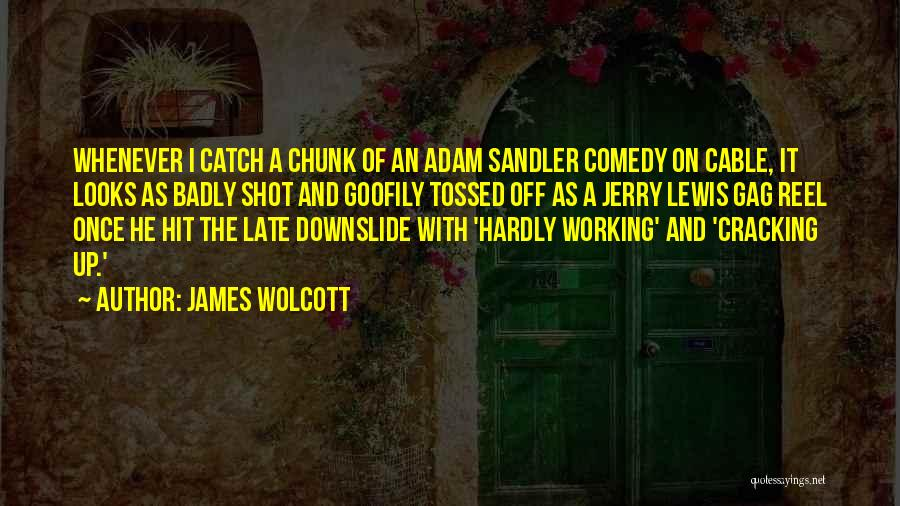 Reel Quotes By James Wolcott