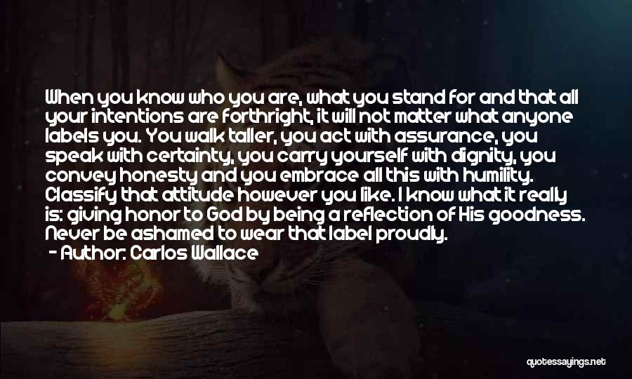 Reflection Of Yourself Quotes By Carlos Wallace