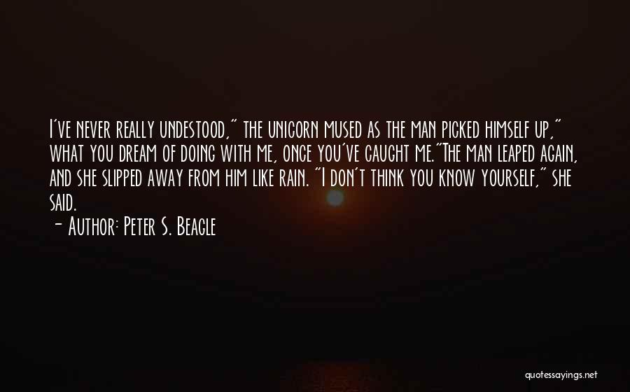 Reflection Of Yourself Quotes By Peter S. Beagle