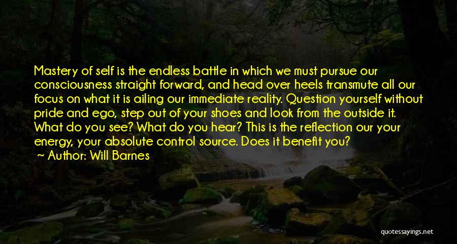 Reflection Of Yourself Quotes By Will Barnes