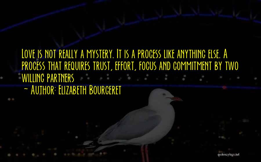 Relationship Without Trust Like Quotes By Elizabeth Bourgeret