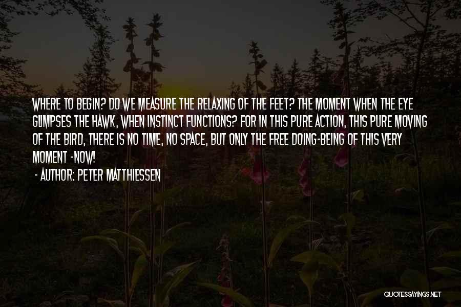 Relaxing Quotes By Peter Matthiessen