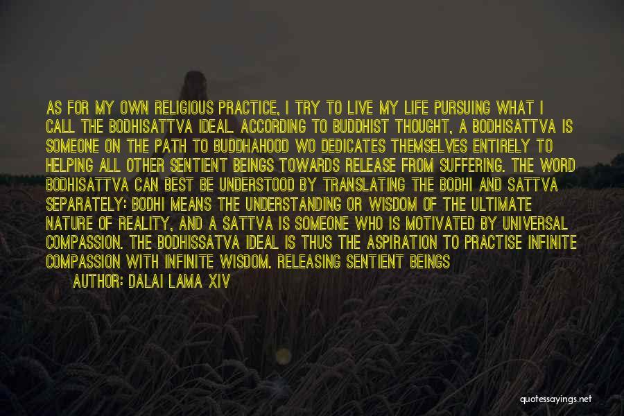 Releasing Quotes By Dalai Lama XIV