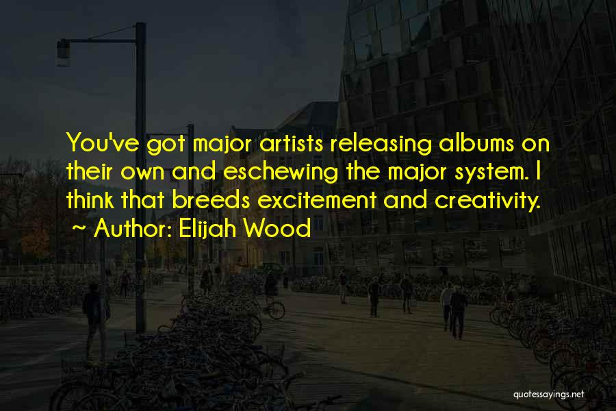 Releasing Quotes By Elijah Wood