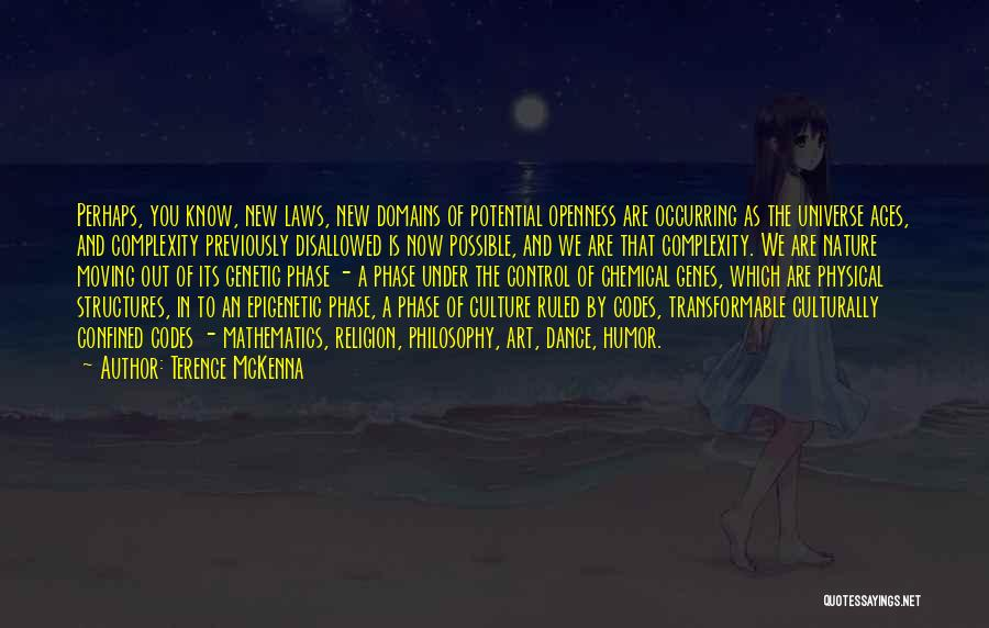 Religion In Art Quotes By Terence McKenna