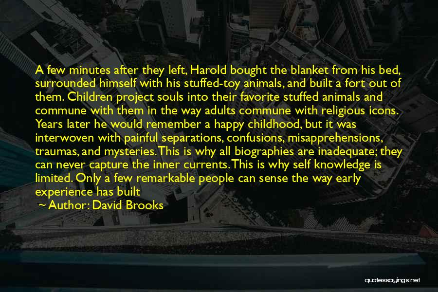 Religious Icons Quotes By David Brooks
