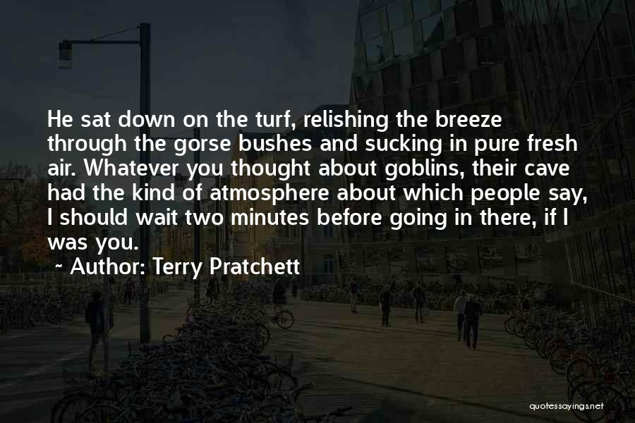 Relishing Quotes By Terry Pratchett