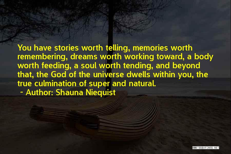 Remembering God Quotes By Shauna Niequist