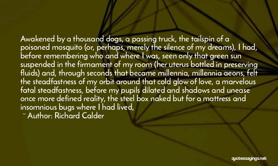 Remembering My Love Quotes By Richard Calder