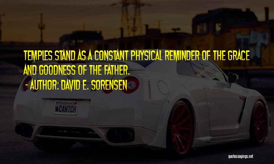 Reminder Quotes By David E. Sorensen