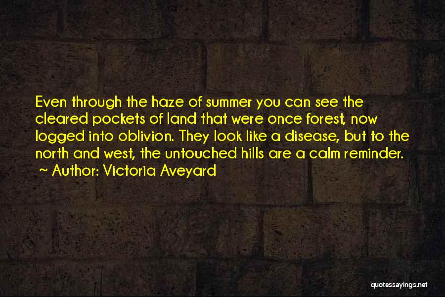 Reminder Quotes By Victoria Aveyard